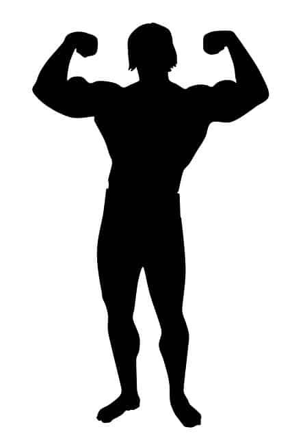 Muskelgruppen crosstrainer